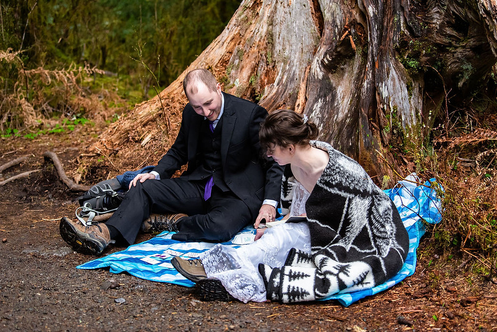 A couple plays a board game during their Olympic National Park elopement in the Hoh Rainforest