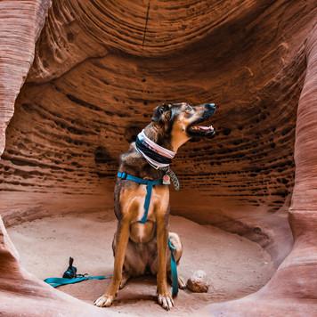 adventure-elopement-photographer-40.jpg