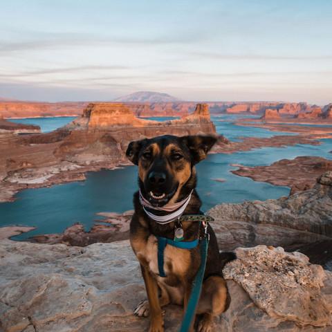 adventure-elopement-photographer-alstrom-point-lake-powell