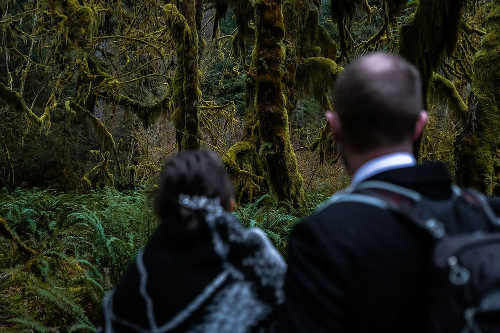 A couple admires the mosses in the Hall of Mosses in the Hoh Rainforest during their Olympic national Park adventure elopement