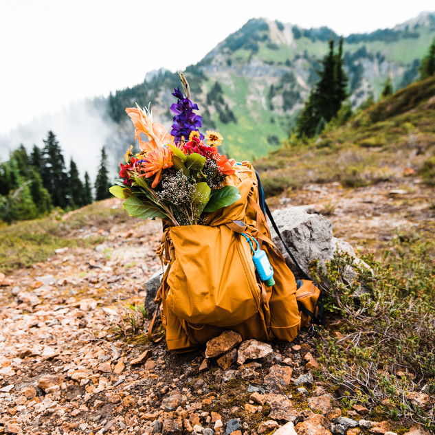 mount-rainier-washington-adventure-elope