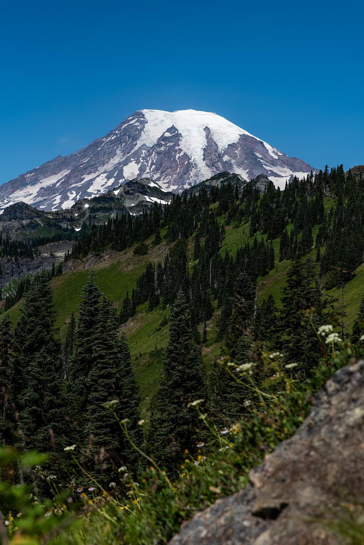 A sunny day at Mount Rainier National Park