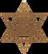 PP_logo_icon_darkgold.png