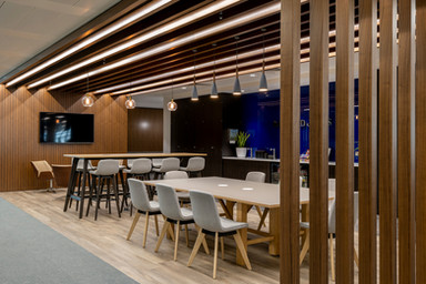 Feature Wall, slats ceiling fins LED lighting timber