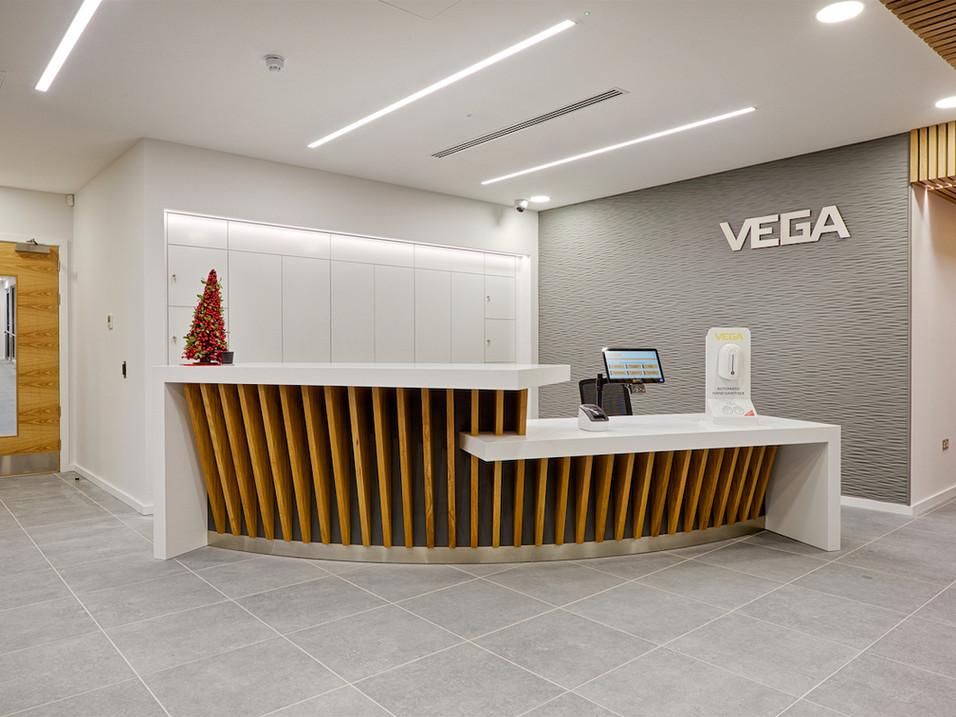 Vega Controls Ltd