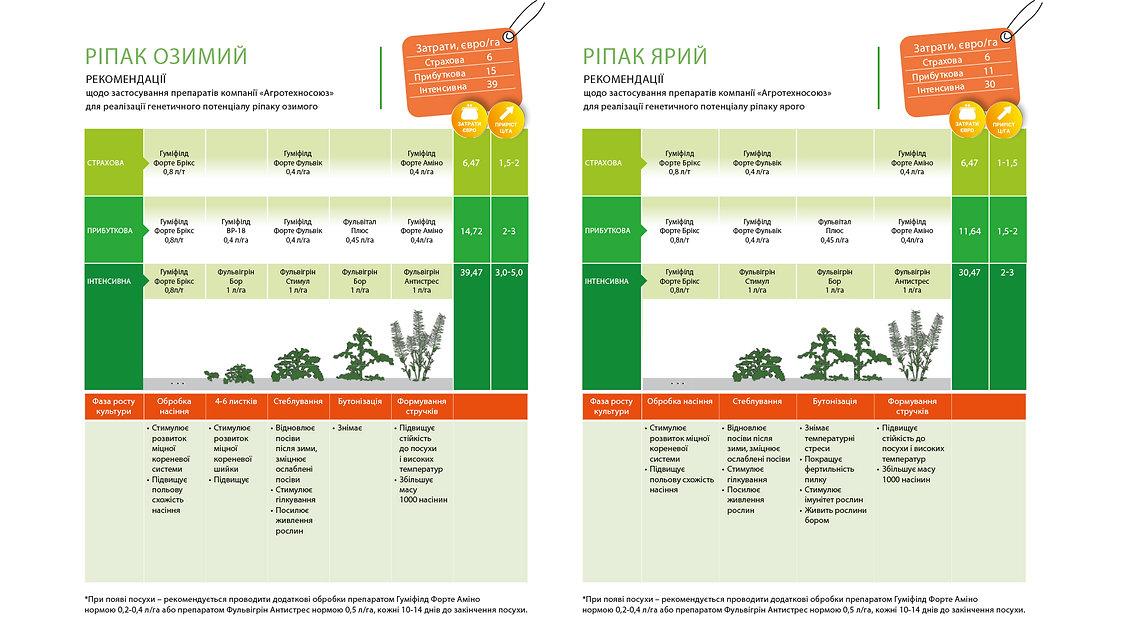Технологія вирощування ріпаку