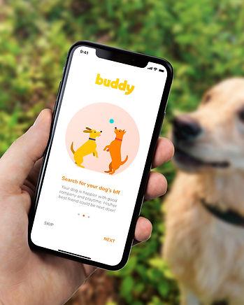 Buddy_2.jpg