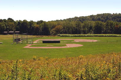Major League & Little League Fields