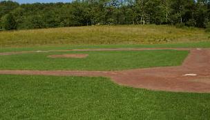 Little Field