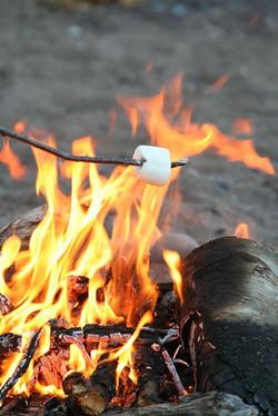 Campfire & s'mores on Thursday