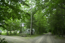 Wooded water & electric sites