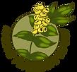 Native Plantscapes Nw mini logo