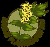 Native Plantscapes NW logo