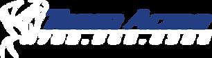 Team Acme Web Logo.png