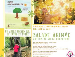 Balade nature le samedi 7 novembre 2020