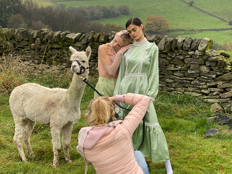 Shooting with alpacas 🦙