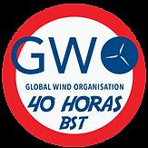 GWO-40.png