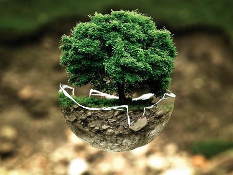 Journée mondiale de la réduction des déchets