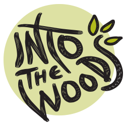 Seeking Young Actors for INTO THE WOODS