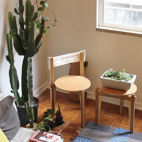Melhorando seu humor com plantas em casa