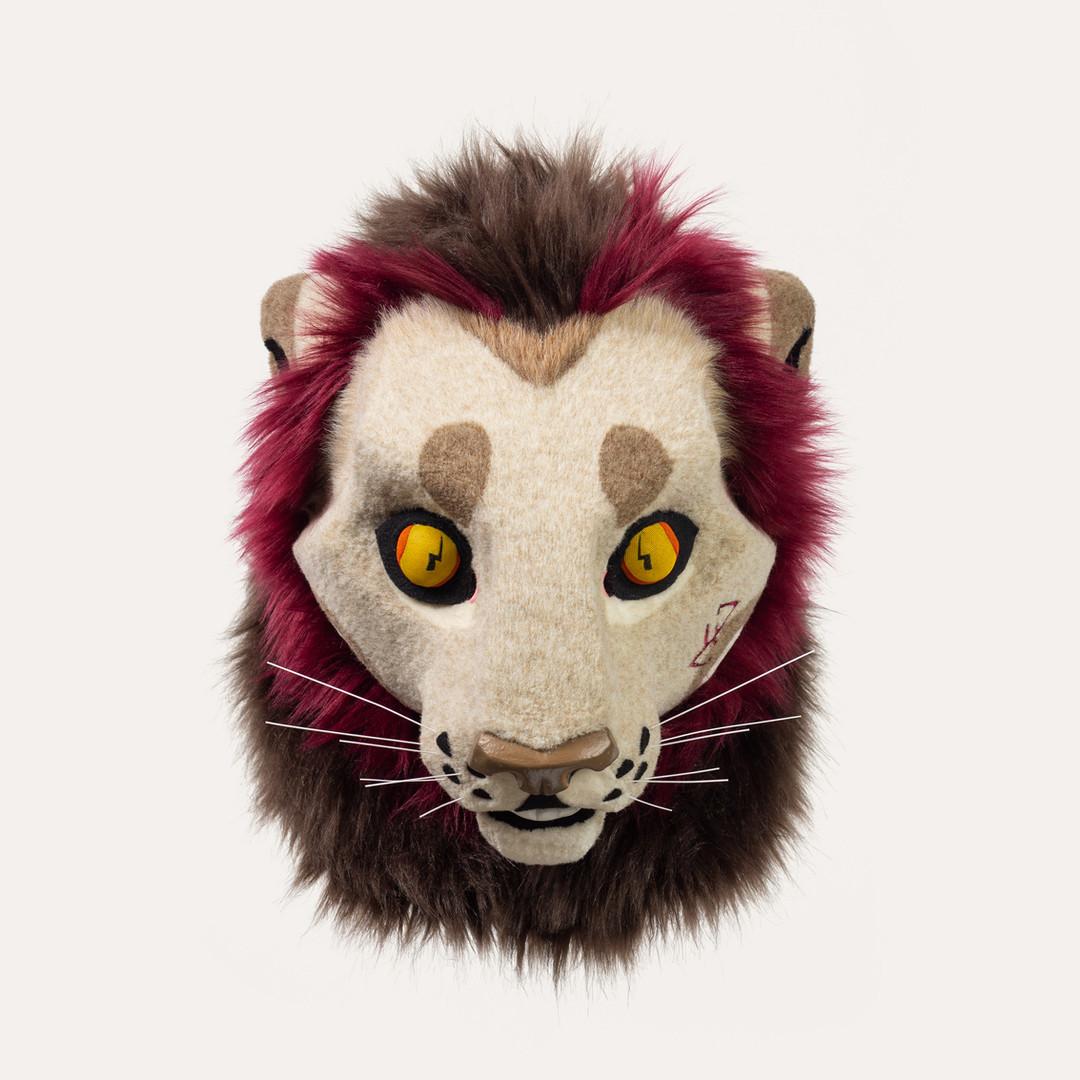 Lion  |  Head