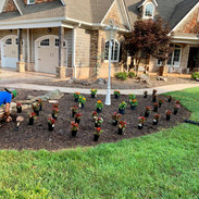 Lawn Care Fertilization