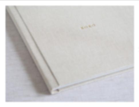 Fine Art Album.jpg