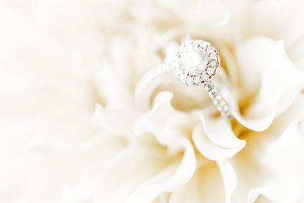 Kiran + Ryan - Prince George Hotel Wedding - Halifax Wedding - Tori Claire Photography-507
