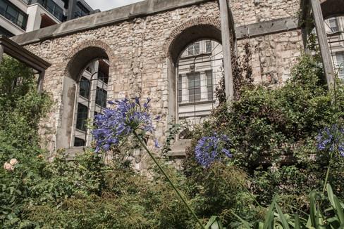 Christchurch Greyfriars Garden