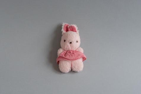 Little Pink Rabbit