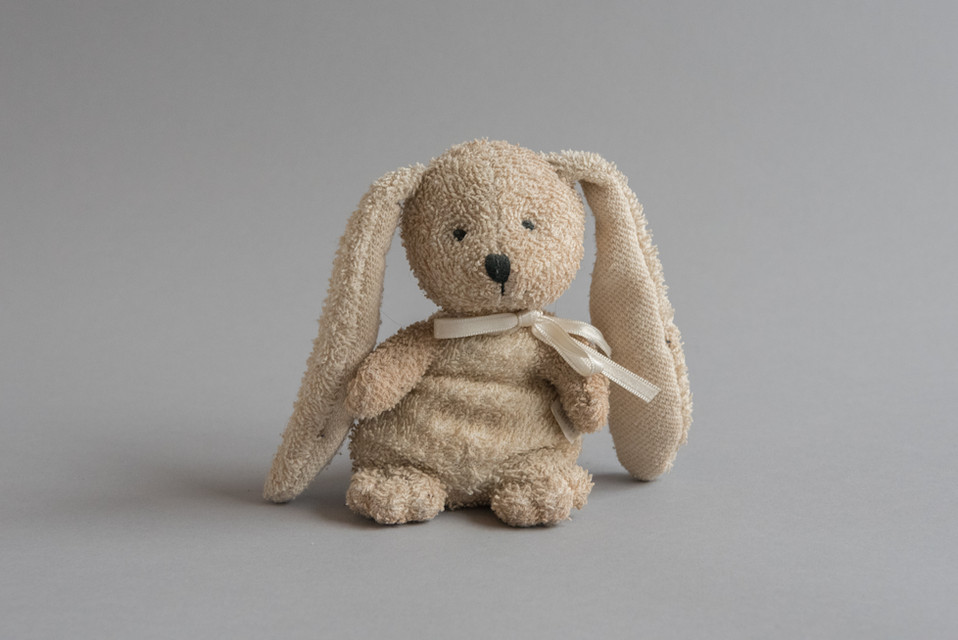 Revision Bunny