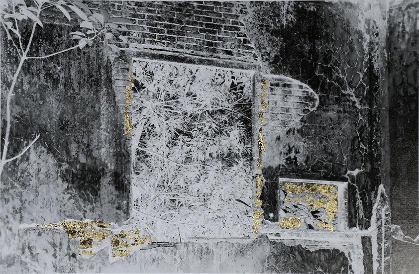 Bassouls Sophie - Photographie (T12)