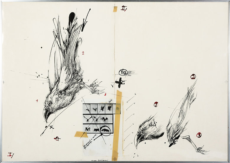 Vladimir Velickovic Birds Fig. VI, 1978