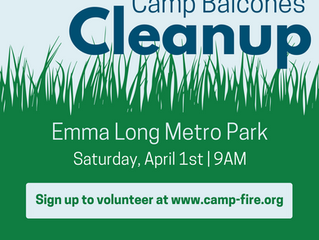 Camp Balcones Cleanup