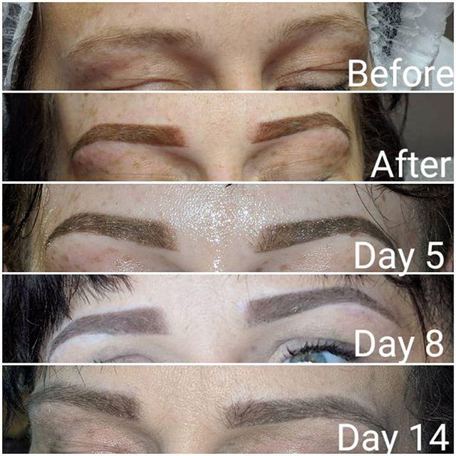 SPMU Powder brows healing stages