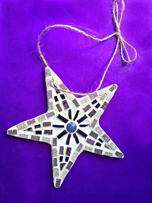 Purple and Silver Star