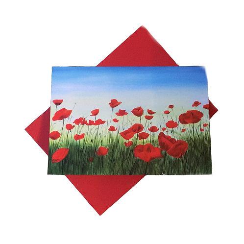 Poppy patch