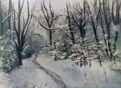 Snowy Box Hill