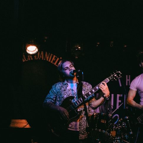 Sunflower Lounge #6