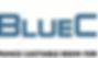 Bluecast resin logo