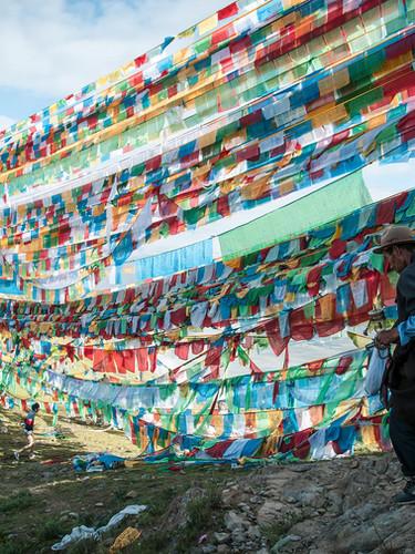 si06_shinyaitahana_pilgrimage_web.jpg