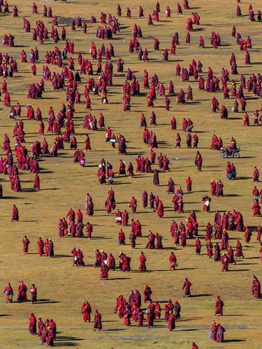 si05_shinyaitahana_patternsofgrassland_web.jpg