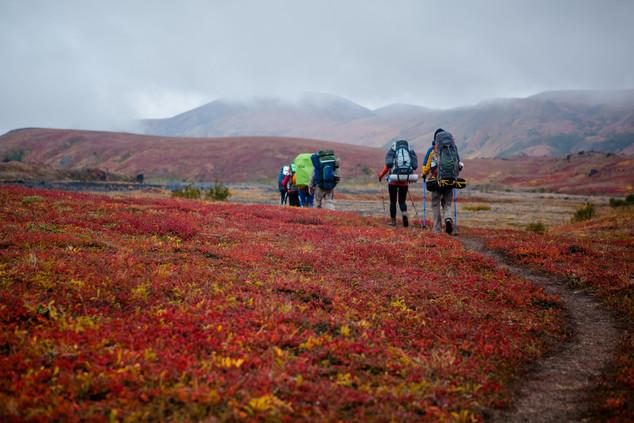 Осень на поляне Эдельвейсов