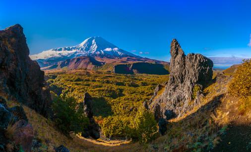 Панорама Толбачика и поляны Эдельвейсов