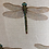 Thumbnail: Dragonfly linen scatter cushion