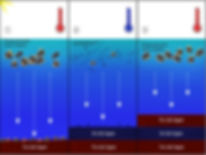 Possible deposition of alternating iron and silicate mineral layers triggered by temperature fluctuations in the ocean water - based on Posth et al. (2008).