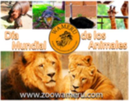 Día_Mundial_Animales.jpg