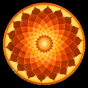 lotusdeign.png