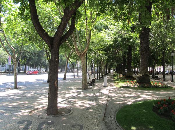 Lisboa_(Lisbon)_Portugal_(3)_(7903651494