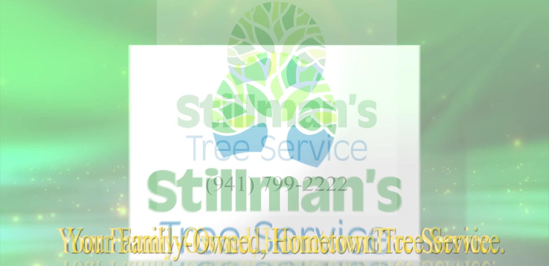 Stillmans Saves The Day.mp4